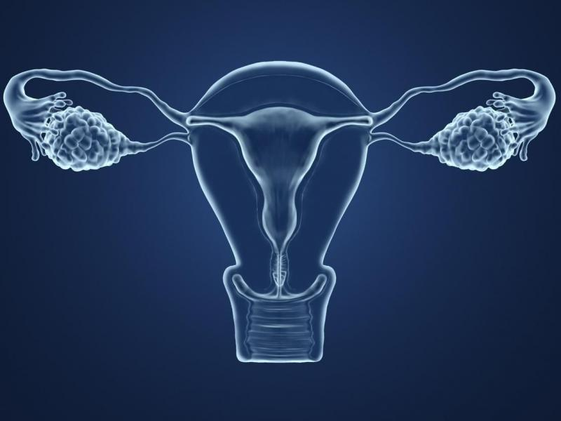 Infertilite inducteurs ovulation 10 questions