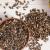 Les meilleures plantes contre la stéatose hépatique