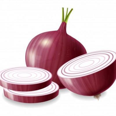 Oignon rouge 1268 12406