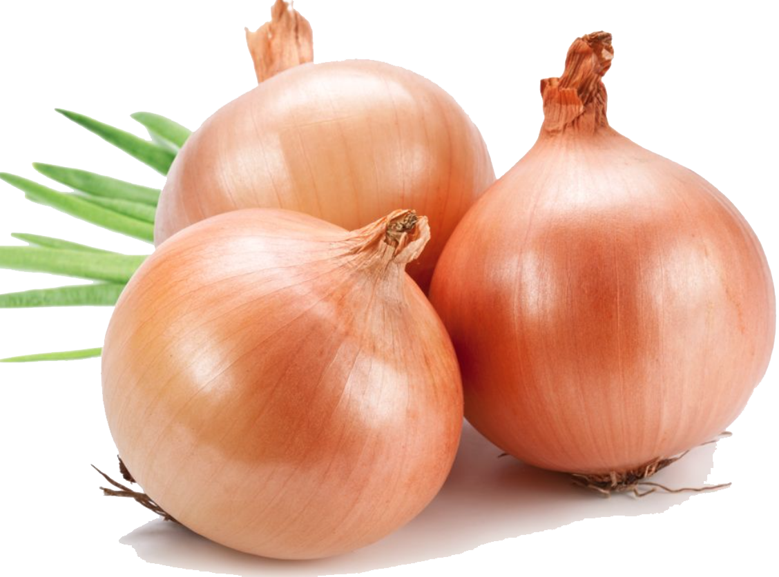 Onion and prostatitis grandmother s remedy