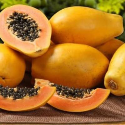 Papaya against hepatitis