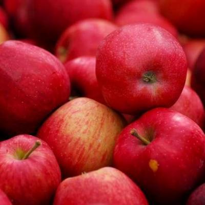 Pomme contre l infertilite