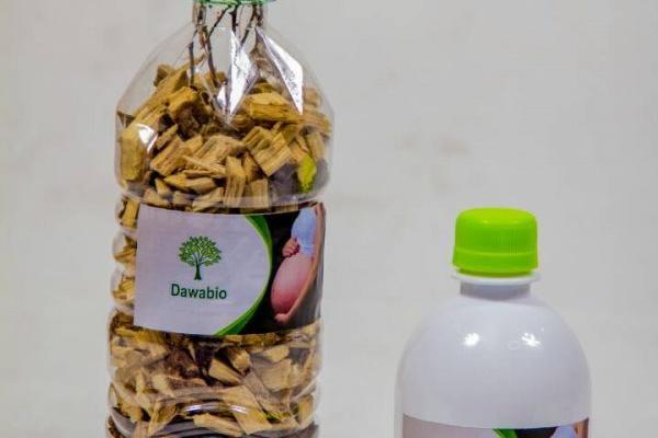 Traitement naturel par les plantes medicinales contre Trompes bouchée